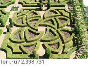 Купить «Сад в замке Вилландри, Франция», фото № 2398731, снято 29 мая 2009 г. (c) Максим Лоскутников / Фотобанк Лори