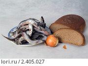 Купить «Тарелка с рыбой, хлеб и луковица», фото № 2405027, снято 22 февраля 2011 г. (c) Владимир Фаевцов / Фотобанк Лори