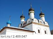 Купить «Москва. Церковь Покрова Пресвятой Богородицы в Братцево», эксклюзивное фото № 2409047, снято 9 марта 2011 г. (c) lana1501 / Фотобанк Лори