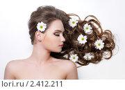 Купить «Красивая девушка с ромашками в волосах», фото № 2412211, снято 1 марта 2011 г. (c) Валуа Виталий / Фотобанк Лори