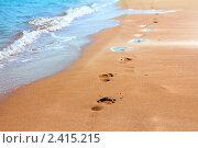 Купить «Следы на песке вдоль кромки моря», фото № 2415215, снято 26 ноября 2010 г. (c) Михаил Коханчиков / Фотобанк Лори