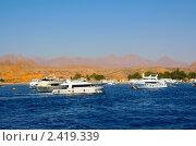 Купить «Туристические яхты в Шарм-эш-Шейхе, Египет», фото № 2419339, снято 30 октября 2008 г. (c) ElenArt / Фотобанк Лори