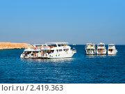 Купить «Туристические яхты в заповеднике Рас-Мухамед, Египет», фото № 2419363, снято 30 октября 2008 г. (c) ElenArt / Фотобанк Лори