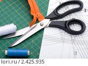 Купить «Принадлежности для шитья», фото № 2425935, снято 25 февраля 2011 г. (c) Угоренков Александр / Фотобанк Лори