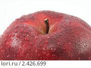 Купить «Красное яблоко в каплях воды макро», фото № 2426699, снято 24 марта 2011 г. (c) Наталья Волкова / Фотобанк Лори