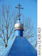Купить «Москва. Часовня около церкви Покрова Пресвятой Богородицы в Братцево», эксклюзивное фото № 2428423, снято 9 марта 2011 г. (c) lana1501 / Фотобанк Лори