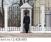Купить «Норвежский королевский гвардеец на посту около королевского дворца в Осло», фото № 2428683, снято 7 марта 2011 г. (c) Михаил Марковский / Фотобанк Лори
