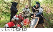 Купить «Привал рыцарей», фото № 2429123, снято 5 июня 2010 г. (c) Яков Филимонов / Фотобанк Лори