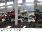 Купить «Автомобили, сданные в металлолом по программе утилизации», фото № 2429591, снято 22 марта 2011 г. (c) Михаил Коханчиков / Фотобанк Лори