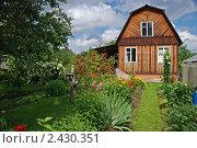 Купить «Дачный участок», фото № 2430351, снято 20 июля 2008 г. (c) Екатерина Жукова / Фотобанк Лори