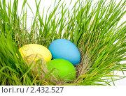 Пасхальные яйца в траве. Стоковое фото, фотограф Константин Буркин / Фотобанк Лори