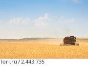 Купить «Комбайн работает в поле», фото № 2443735, снято 17 июля 2010 г. (c) Максим Лоскутников / Фотобанк Лори