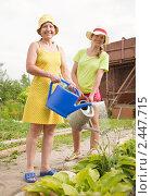 Купить «Женщины поливают цветы в огороде», фото № 2447715, снято 27 июня 2010 г. (c) Яков Филимонов / Фотобанк Лори