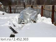 Купить «Сломанная теплица после снежной зимы», фото № 2452303, снято 3 апреля 2011 г. (c) Виктор Сухарев / Фотобанк Лори