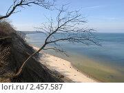 Купить «Светлогорск . Балтийское побережье», эксклюзивное фото № 2457587, снято 3 апреля 2011 г. (c) Svet / Фотобанк Лори