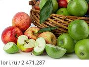 Яблоки. Стоковое фото, фотограф Marina Appel / Фотобанк Лори