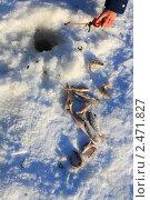 Купить «Улов, удочка в руке и лунка во льду», эксклюзивное фото № 2471827, снято 15 января 2011 г. (c) Анатолий Матвейчук / Фотобанк Лори