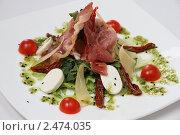 Купить «Оригинальный салат из зелени,сыра,помидор и мяса», фото № 2474035, снято 14 апреля 2011 г. (c) Александр Черемнов / Фотобанк Лори