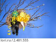 Две куклы сидят в гнезде на ветке. Стоковое фото, фотограф Ольга Киселева / Фотобанк Лори