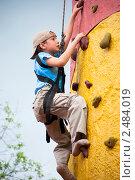 Купить «Мальчик на скалодроме», фото № 2484019, снято 9 мая 2010 г. (c) Недзельская Татьяна / Фотобанк Лори