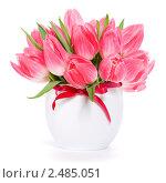 Купить «Букет розовых тюльпанов», фото № 2485051, снято 7 апреля 2011 г. (c) Наталия Кленова / Фотобанк Лори