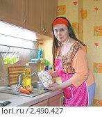 Купить «Женщина готовит шампиньоны», эксклюзивное фото № 2490427, снято 14 апреля 2011 г. (c) Олеся Сарычева / Фотобанк Лори