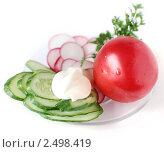 Купить «Легкая овощная закуска с майонезом», фото № 2498419, снято 24 апреля 2011 г. (c) Короленко Елена / Фотобанк Лори