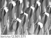 Купить «Металлические сверла», фото № 2501571, снято 21 октября 2018 г. (c) Дмитрий Калиновский / Фотобанк Лори