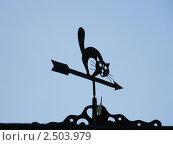 Флюгер. Стоковое фото, фотограф Евгений Толстихин / Фотобанк Лори