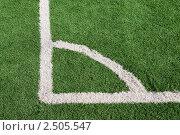 Купить «Разметка футбольного поля, угол», фото № 2505547, снято 22 апреля 2011 г. (c) Борис Панасюк / Фотобанк Лори