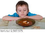 Купить «Мальчик отказывается есть суп», фото № 2507575, снято 22 апреля 2011 г. (c) Елена Блохина / Фотобанк Лори