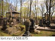 Купить «Старинное кладбище при Донском монастыре. Москва», фото № 2508675, снято 2 мая 2011 г. (c) Наталья Волкова / Фотобанк Лори