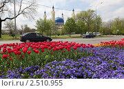 Купить «Г. Майкоп. Соборная мечеть», фото № 2510955, снято 2 мая 2011 г. (c) Виктор Филиппович Погонцев / Фотобанк Лори