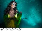 Купить «Русалка на дне морском», фото № 2514227, снято 26 февраля 2011 г. (c) Сергей Новиков / Фотобанк Лори