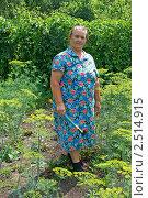 Купить «Бабушка на грядке», фото № 2514915, снято 4 июля 2010 г. (c) Васильева Татьяна / Фотобанк Лори