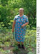 Бабушка на грядке. Стоковое фото, фотограф Васильева Татьяна / Фотобанк Лори