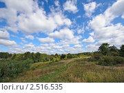 Купить «Летний пейзаж», фото № 2516535, снято 11 сентября 2010 г. (c) Евгений Дробжев / Фотобанк Лори