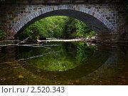 Купить «Старый каменный мост», фото № 2520343, снято 22 июня 2010 г. (c) Serg Zastavkin / Фотобанк Лори