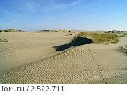 Песчаные дюны, поросшие травой (2010 год). Редакционное фото, фотограф Сергей Жинко / Фотобанк Лори