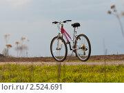 Велосипед в поле (2011 год). Редакционное фото, фотограф Иван Губанов / Фотобанк Лори