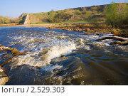Купить «Перекат на небольшой реке», фото № 2529303, снято 1 мая 2011 г. (c) Борис Панасюк / Фотобанк Лори