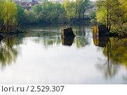 Купить «Утренняя река с остатками свай старого моста», фото № 2529307, снято 1 мая 2011 г. (c) Борис Панасюк / Фотобанк Лори