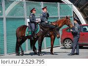 Купить «Конная полиция на Манежной площади в Москве», эксклюзивное фото № 2529795, снято 12 мая 2010 г. (c) lana1501 / Фотобанк Лори