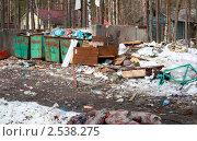 Купить «Помойка», фото № 2538275, снято 18 апреля 2011 г. (c) Елена Арсентьева / Фотобанк Лори