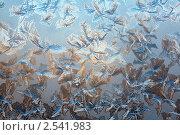 Купить «Ледяные узоры на стекле», фото № 2541983, снято 12 января 2011 г. (c) Минаев С.Г. / Фотобанк Лори