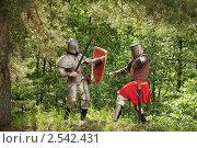 Купить «Битва рыцарей», фото № 2542431, снято 5 июня 2010 г. (c) Яков Филимонов / Фотобанк Лори