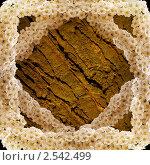 Рамка  - древесный фон в цветочном обрамлении. Стоковое фото, фотограф Жданова Дарья Юрьевна / Фотобанк Лори