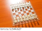 Купить «Стеклянные шахматы», фото № 2544627, снято 20 мая 2010 г. (c) Elnur / Фотобанк Лори