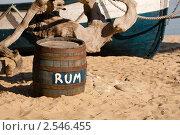 Купить «Бочка рома на песке», фото № 2546455, снято 7 ноября 2010 г. (c) Фадеева Марина / Фотобанк Лори