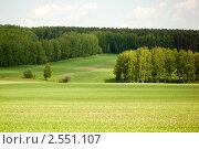 Купить «Родные просторы. Весенний пейзаж», эксклюзивное фото № 2551107, снято 21 мая 2011 г. (c) Gagara / Фотобанк Лори